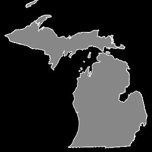 Michigan Court Reporters